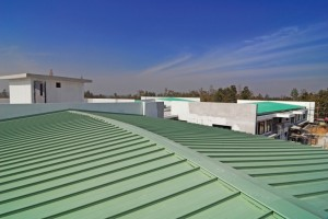 green-roof-1024x682